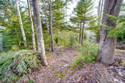 2084 Lawrencetown Road, Upper Lawrencetown, NS